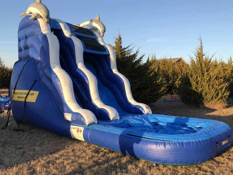 16 ft Dolphin Slide with pool - Dry